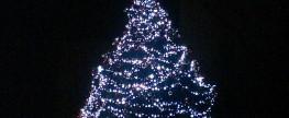 Borek – rozsvícení vánočního stromu a setkání seniorů