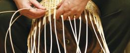 Kurz pletení z vrbového proutí