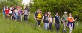 Poněšický pochod
